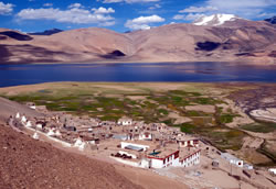 Contact Hotel Tsomoriri Lake View Ladakh